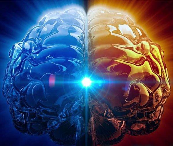 brain synchronisation
